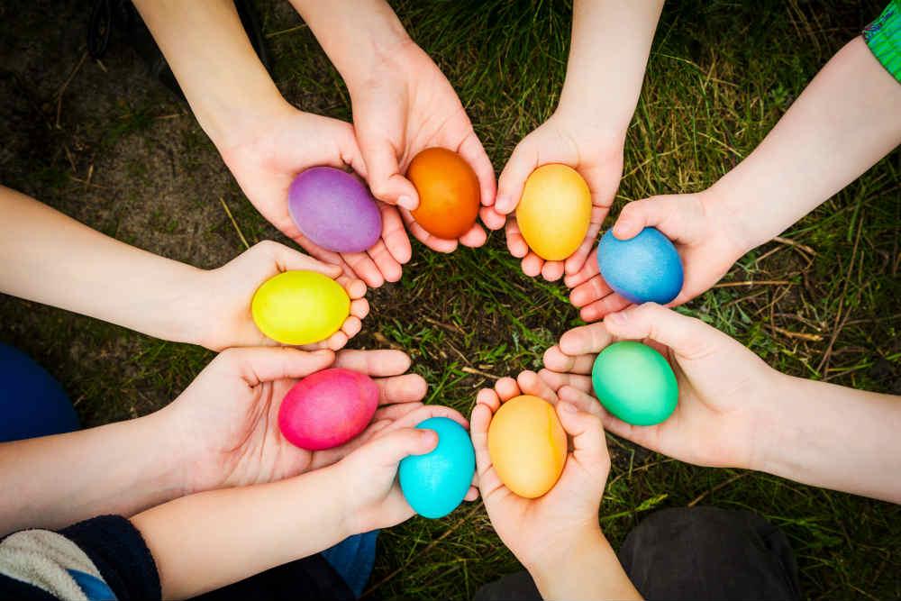 mi a gömbféreg tojás