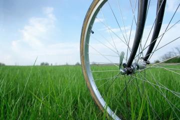 bicikli-bringázz