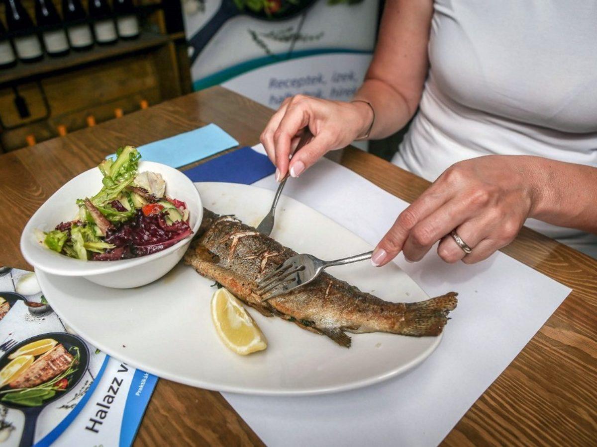 milyen halakat kell enni visszérrel