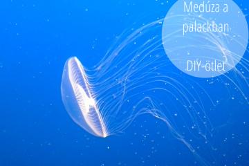 medúza-a-palackban
