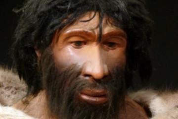 neander völgyi ember