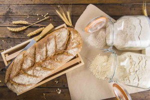 kenyér, búza